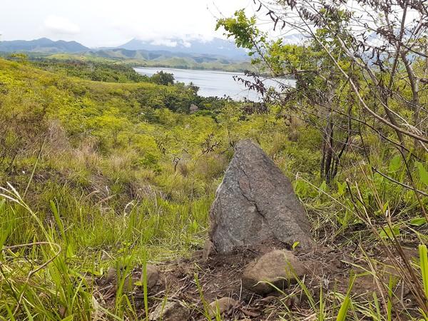 Penelitian Balai Arkeologi Papua di Bukit Yomokho berhasil menemukan hunian prasejarah. Jejak aktivitas manusia prasejarah di situs ini diketahui dari sisa makanan berupa cangkang siput danau, cangkang moluska laut, tulang, dan gigi babi. (Hari Suroto/Istimewa)