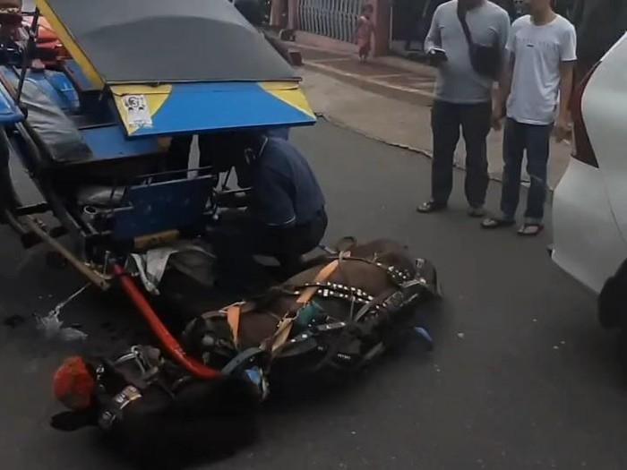 Kuda terjatuh karena kelelahan di Cianjur.