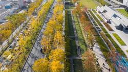 Indahnya Taman Bekas Landasan Pacu di China