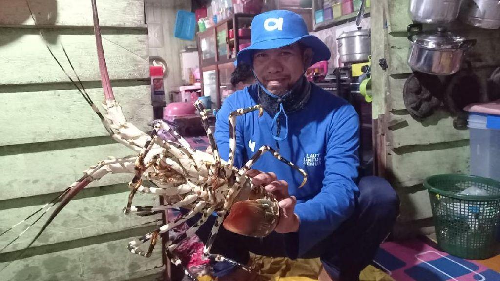 15 Ribu Nelayan Jualan Ikan Online Pakai Aruna