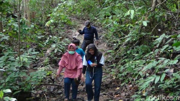 Lokasi Gua Kelelawar berjarak lebih kurang 30 km dari pusat Pemerintahan Kabupaten Kutai Kartanegara yakni di Kecamatan Tenggarong. Sebagian gua tersebut berada di puncak Bukit Desa Sedulang. Butuh trekking untuk menuju ke sini. (Suriyatman/detikTravel)