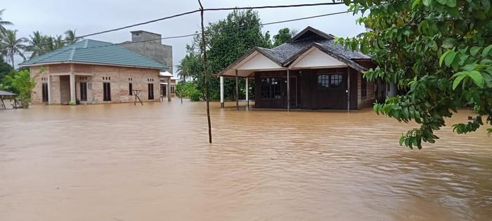 Sebanyak 21.990 jiwa dan 6.346 unit rumah di Tanah Laut, Kalsel, terendam banjir (dok BNPB)