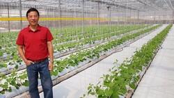 Cerita Eks Bos Disc Tarra yang Sekarang Jadi Petani Sayur