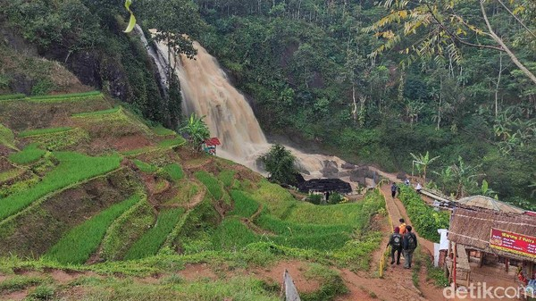 Hamparan kebun teh menemani perjalanan, baik saat traveler melalui jalur Gunung Padang ataupun Jalur Campaka. Perbukitan teh ini membuat pandangan menjadi jernih dan menuai kekaguman.