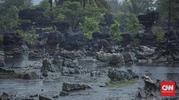 Hutan batu Ramang-Rammang seluas 4.500 hektare. CNN Indonesia/Bisma Septalismaaa