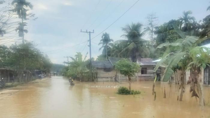 Banjir di Aceh Timur (dok. Istimewa)