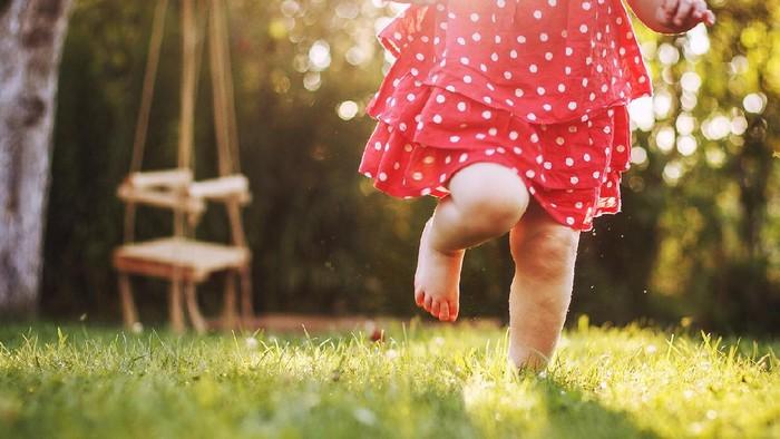 little girls bare feet in the grass. little girl running  at sunset little girls bare feet in the grass. little girl running  at sunset