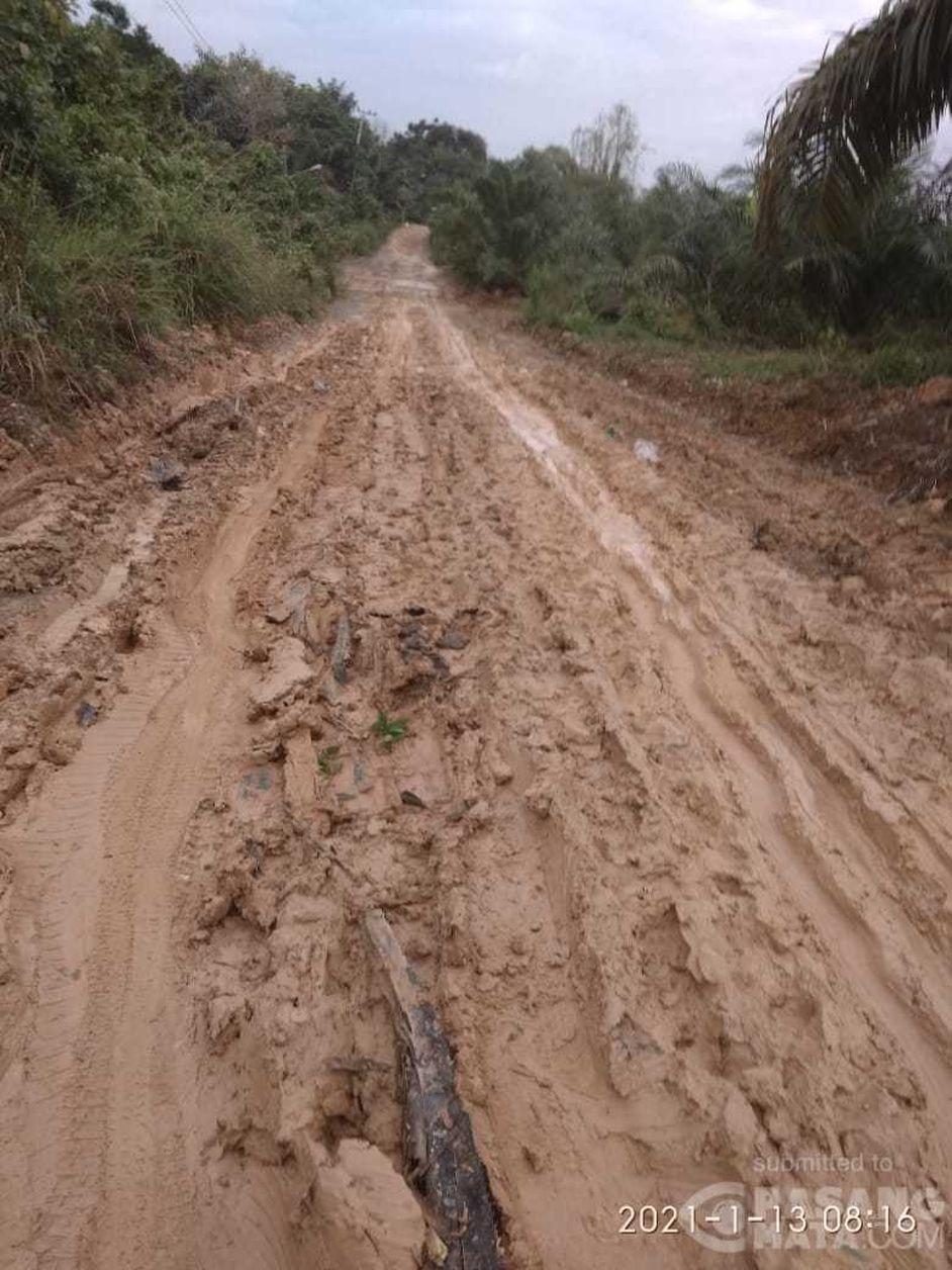 Jalan menuju desa transmigrasi Buket Hagu, Kecamatan Lhoksukon, Aceh Utara, rusak. (Wahyu via Pasangmata)