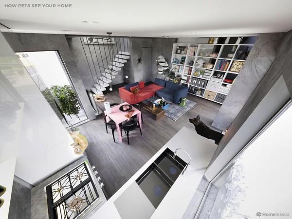 Sebuah perusahaan yang bergerak dalam servis perbaikan, pemeliharan rumah, dan renovasi bernama Home Advisor membagikan proyek terbaru.