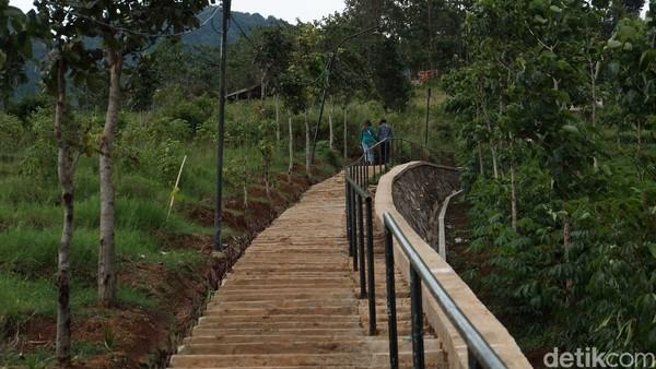 Sambil menaiki tangga menuju puncak, wisatawan akan disuguhi dengan pemandangan kebun dan sawah yang ada di kanan kiri tangga. (Foto: Siti Fatimah/detikcom)