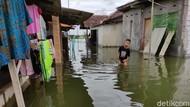 Meski Banjir Tak Surut Sejak Akhir 2020, Warga Sidoarjo Ini Ogah Direlokasi