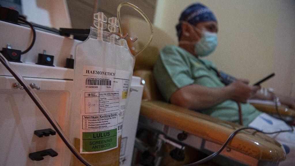 Belum Jadi Terapi Standar COVID-19, Apa Saja Syarat Donor Plasma Konvalesen?