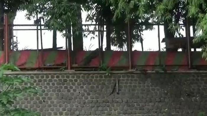 Video sejoli mesum di tempat wisata Kabupaten Pasuruan tersebar di media sosial. Rekaman aksi tak senonoh itu membuat warga heboh.