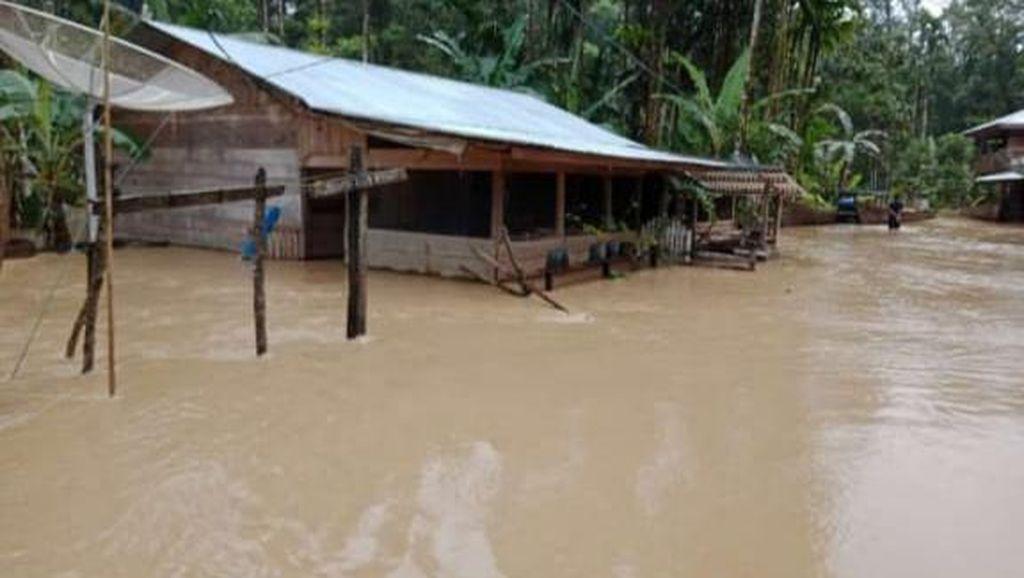 Banjir Terjadi di Aceh Timur-Langsa, Ratusan Warga Mengungsi