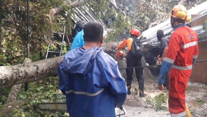 Hujan lebat disertai angin kencang membuat pohon tumbang dan menimpa rumah serta jaringan listrik di Kapanewon Ngemplak, Sleman, Rabu (20/1/2021).