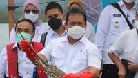 Trenggono: Lobster Harus Kita Kembangkan di Dalam Negeri!