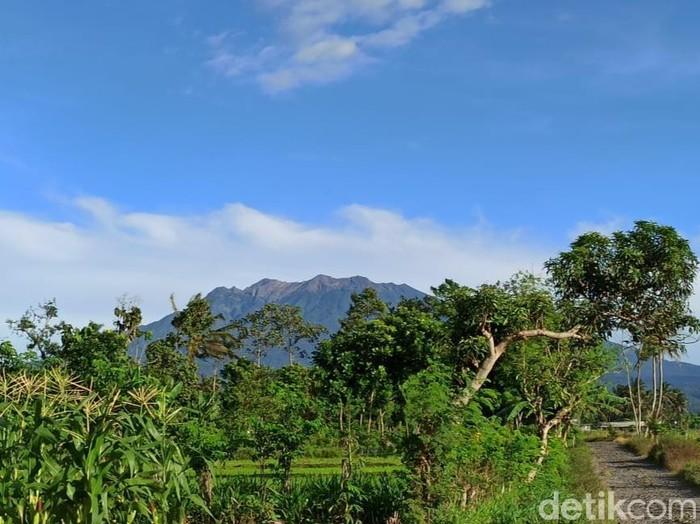Gunung Raung erupsi sebanyak 32 kali. Saat ini, status gunung yang masuk wilayah Banyuwangi, Bondowoso dan Jember ini masih normal.
