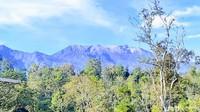 Waspada Energi Tektonisme dan Vulkanisme Gunung Raung dan Merapi!