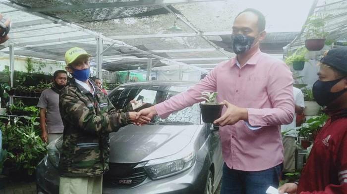 Pedagang tanaman hias di Bogor tukar janda bolong dengan mobil