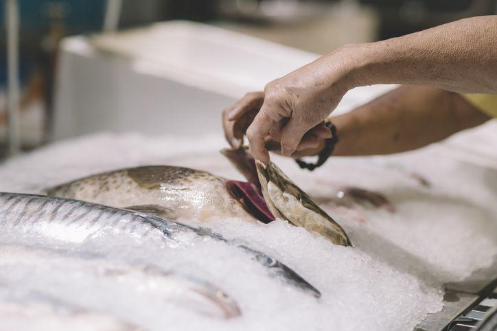 Perbandingan Nilai Gizi dalam 100 Gram Daging, Tahu, Tempe dan Ikan