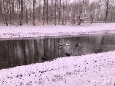 Utrecht Kala Turun Salju di Sore Hari