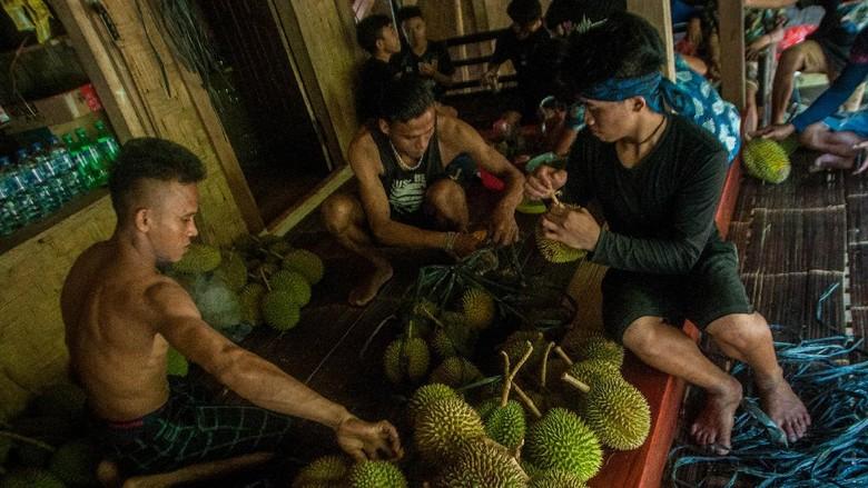 Warga Suku Baduy Luar menunjukan buah durian yang akan dijualnya di Desa Kenekes, Lebak, Banten, Rabu (20/1/2021). Memasuki musim buah durian pada bulan Januari hingga Februari, warga Suku Baduy menjual berbagai jenis buah durian lokal dari kawasan Baduy tersebut dengan harga Rp30-50 ribu per buah. ANTARA FOTO/Muhammad Bagus Khoirunas/wsj.