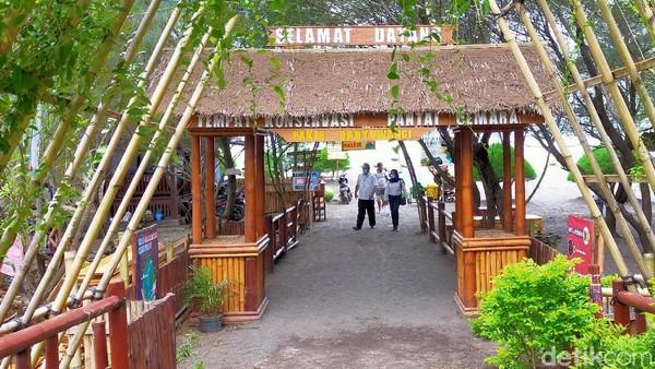 Selamat datang di Pantai Cemara Banyuwangi. Di pantai ini, traveler bisa melihat 3 tempat konservasi sekaligus, yaitu konservasi penyu, cemara laut dan juga tanaman bakau. (Ardian Fanani/detikTravel)