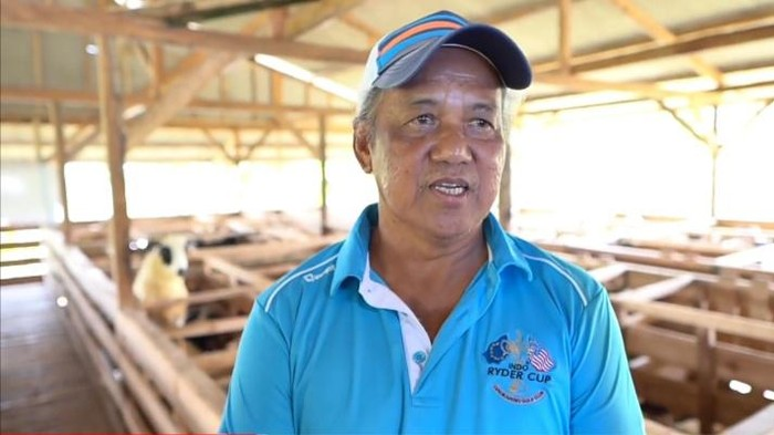 Pensiunan Ini Ternak Domba Dapat Rp 300 Juta/Bulan, Begini Caranya!