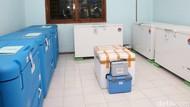 Vaksin COVID-19 Datang ke Lamongan Diperkirakan 27-28 Januari