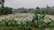 Potret Tumpukan Sampah Seluas Lapangan Bola di Pinggir JORR Bekasi