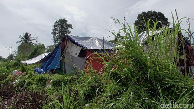 Sebagian warga Kabupaten Mamuju korban gempa bumi berkekuatan magnitudo 6,2 masih bertahan di lokasi pengungsian (Abdy Febriady/detikcom)