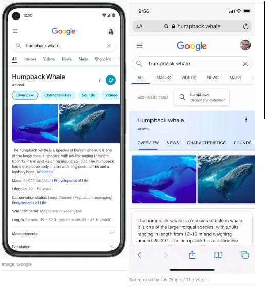Tampilan Baru dan Lama Google Search di seluler