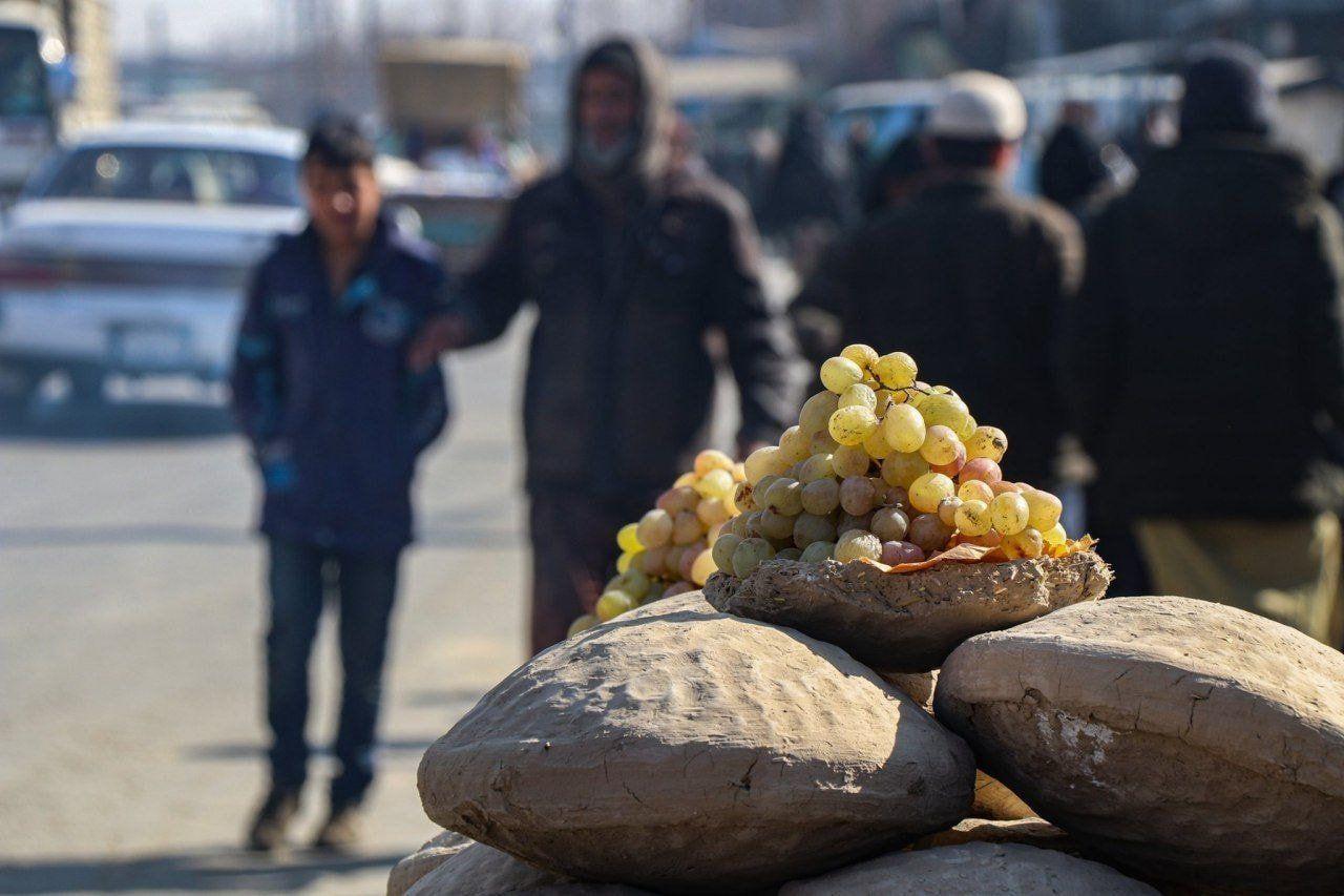 Awet 6 Bulan, Begini Cara Simpan Buah Anggur ala Masyarakat Afghanistan