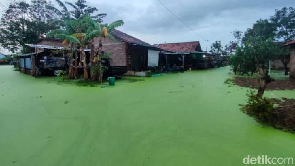 Penampakan Banjir Berwarna Hijau di Pekalongan