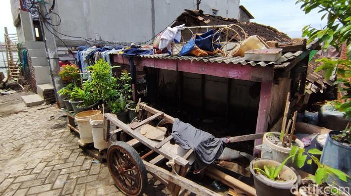 Penurunan muka tanah ditambah dengan rob di pesisir Kota Semarang, Jawa Tengah membuat banyak rumah yang permukaannya harus dinaikkan hingga lebih dari 2 meter. Sehingga rumah-rumah itu kini tampak sangat pendek dibanding rumah pada umumnya.