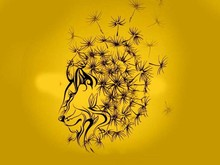 Tes Kepribadian: Gambar Singa, Panther, atau Dandelion yang Pertama Dilihat?