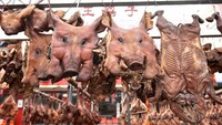 Bikin Kaget! Keluarga Ini Jemur 4.000 Kepala Babi Untuk Jualan