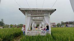 Alam Banget, Kudus Punya Resto Keren di Tengah Sawah