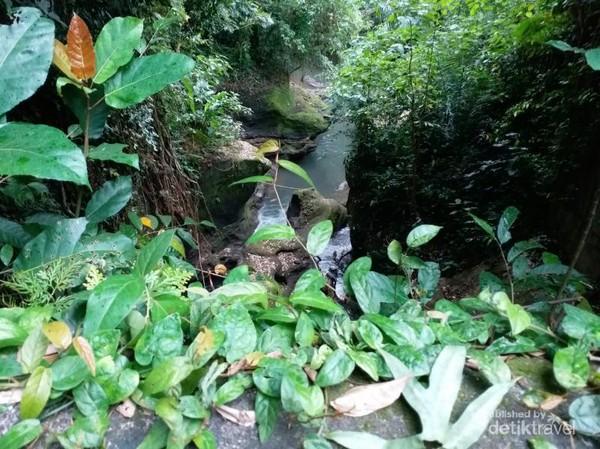 Jalur trek di sekitar Bukit Campuhan, Ubud, Bali