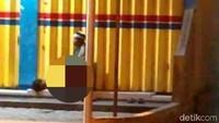 Polisi Lacak Perekam dan Penyebar Video Gisel Dilecehkan di Emperan Toko Jember