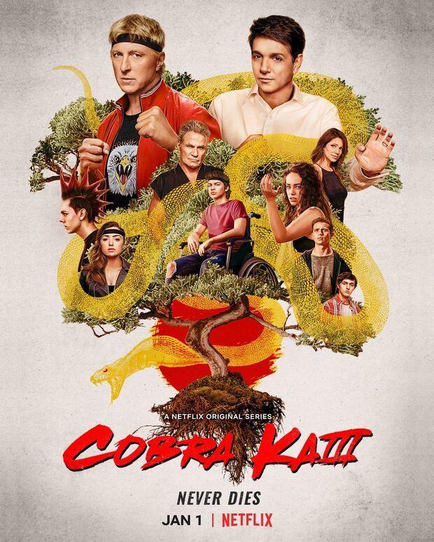 Cobra Kai Musim 3. Ist