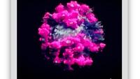 Ngeri, Wujud Nyata Virus Corona dalam 3 Dimensi