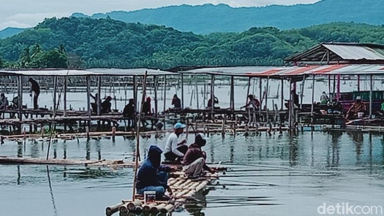 Para penghobi mancing di objek wisata Rawa Jombor, Kecamatan Bayat, Klaten.