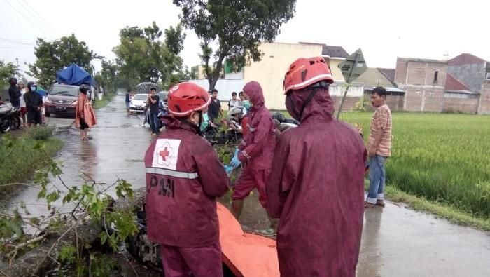 Petugas mengevakuasi pemotor tertimpa pohon di Pilangsari, Ngrampal, Sragen, Selasa (26/1/2021).