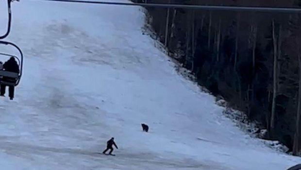 Turis Dikejar Beruang saat main ski