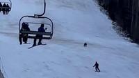 Oh Tidak, Lagi Asyik Main Ski Eh Dikejar Beruang
