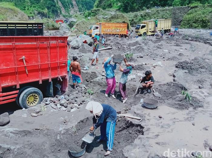 Warga ramai-ramai mengambil pasir yang terbawa anjir lahar hujan Gunung Merapi di Sungai Woro, Klaten, Selassa (26/1/2021).