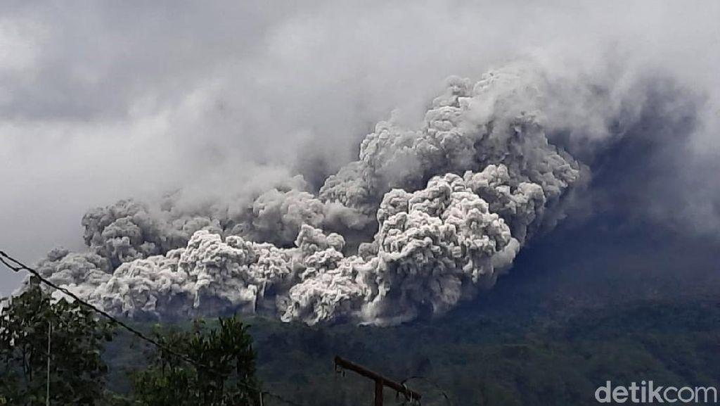 Potret Awan Panas dari Erupsi Gunung Merapi