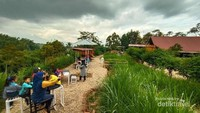 Instagenik, Peternakan Sapi Ini Hits Buat Tempat Nongkrong