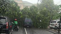 Pohon Tumbang di Pasar Kabangan Solo Timpa 2 Mobil